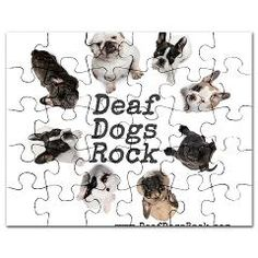 Deaf Dogs Rock - organization that adopts out deaf dog- pinned for Sandi Sue My Animal, Animal Pictures, Doggies, Dogs And Puppies, Deaf Dog, Deaf People, Deaf Culture, Dog Poster, Dog Pin