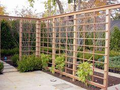 New England Woodworkers, Custom Fence Company for Picket Fences . Garden Shrubs, Garden Fencing, Garden Trellis, Small Pergola, Pergola Attached To House, Backyard Sheds, Backyard Landscaping, Small Gardens, Outdoor Gardens