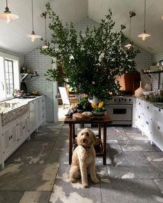 Pics Of Maui Kitchen Cabinets And Aristokraft Kitchen Cabinets Prices.  #kitchencabinets #kitchenorganization