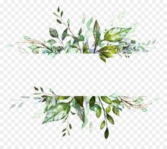 Watercolor Flower Background transparent png is about Drawing, Watercolor Painting, Painting, Digital Art Picsart Png, Watercolor Flower Background, Watercolor Plants, Watercolor Paintings, Flower Watercolor, Wedding Cards, Wedding Invitations, Invites, Theme Nature