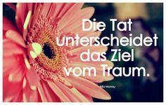 #taten #spruch #sprüche #zitate #sprüchearchiv #traum #ziel