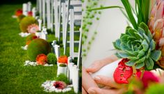 Beautiful vignettes of moss, bright orange flowers, and white rocks to give definition.