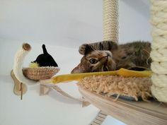 Como dia 8 de Agosto é o Dia Mundial do Gato, achamos que vários donos de gatos podem querer dar um presente para seus companheiros para mostrar-lhes que são amados. Agora, vocês poderiam presenteá-los com um brinquedo em formato de rato ou uma lata de patê, mas uma peça de mobília para gatos pode ser um significativo e duradouro presente para o animal de estimação.
