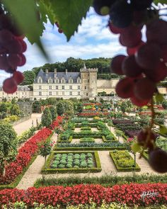 Château de Villandry | via : super_france on IG | by : @maheshacharyake
