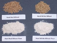 Grinding Wheat Info (red has the stronger wheat flavor)