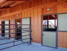Three stall barn with dutch doors