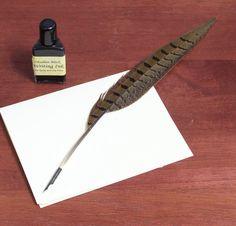 Plume avec plume en acier pointu, Dip de calligraphie de plumes de faisan