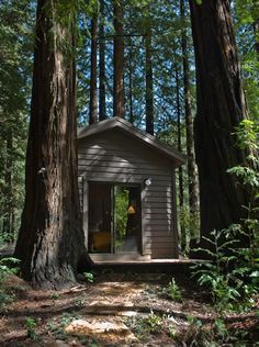 Little Sur Cabins