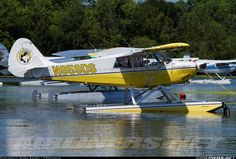 Aviat A-1B Husky aircraft picture