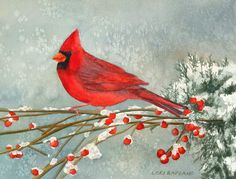 Cardinal in the Snow by Lori Rapuano