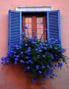 Shutters and flower box no We Heart It. http://weheartit.com/entry/86082781/via/Maisa5                                                                                                                                                                                 Mais