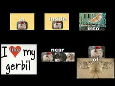 Preposition Song - with gerbils illustrating all of the prepositions! :)