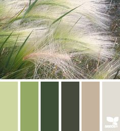 Nature Hues - http://design-seeds.com/index.php/home/entry/nature-hues30