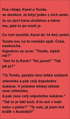 Jaký je to po smrti? Jokes Quotes, Memes, Funny Texts, Haha, Comedy, Funny Pictures, Feelings, My Love, Pictures