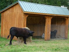 log cow shelters | This is a well constructed, economical choice for sheltering mid to ...