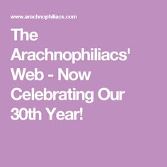The Arachnophiliacs' Web - Now Celebrating Our 30th Year!