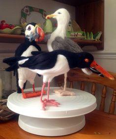 Needle felted Sea birds; gull, puffin, oystercatcher