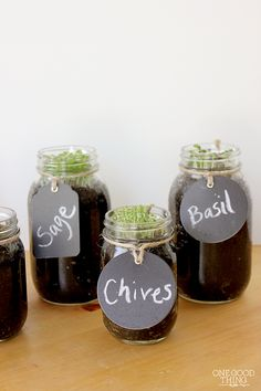 DIY Mason Jar Herb Garden!  The only thing I would worry about is drainage -- but, seeing the roots and earth in the clear glass would definitely prevent over watering.   Thanks, a great and simple, great looking idea.