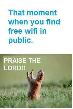 That moment when you find a free WiFi