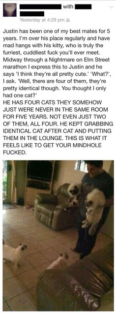 This would have never happen if the friend was a girl...cause she would talk about her 4 cats all the time.