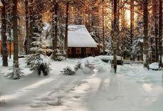 Frumoasa iarna