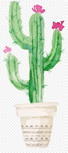 Succulent plant Watercolor painting Drawing Cactaceae - Flowering Cactus