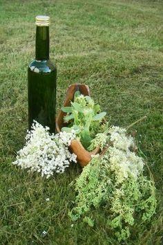 Dieser Wildpflanzen-Blüten-Sirup hat es in sich. Drei wunderbar aromatische Blüten mit starken Heilkräften in einem köstlichen Sirup. Das musst du probieren!