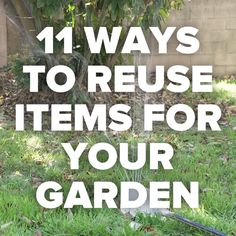 11 Ways To Reuse Items For Your Garden // #gardening #reuse #recycle #garden