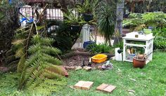 nice ideas for landscaping for kids.  let the children play: simple ways to create a backyard for play