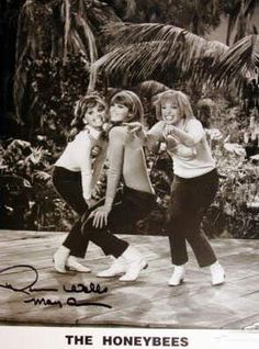 The Honey Bee's!  Oh my, I remember this episode.