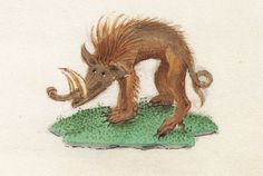 Smiling wild boar, book of hours, Bruges or Ghent century (Beinecke Rare Book and Manuscript Library, MS fol.