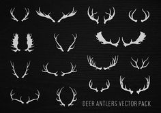 Hand Drawn Deer Antlers Vectors by hwgraphics on Creative Market