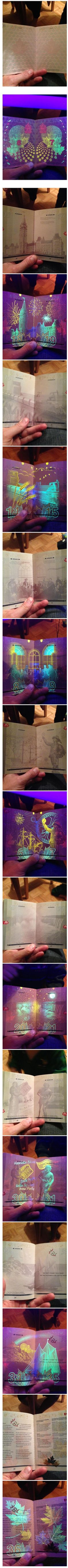 Passaporte canadiense sobre luz violeta