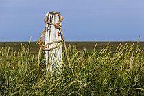 Hallig hooge - 49 Bilder - Bildagentur LOOK