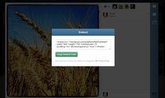 instagram embed. Instagram introduce codurile de incorporat pe blog