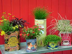 Vintage Can Garden Containers - Old or reproduction food tins make terrific pots for your favorite annual flowers or houseplants. Group them by a theme, such as candy, coffee or veggies, or mix them up for a quaint and colorful collection. Small Space Gardening, Small Gardens, Diy Planters, Garden Planters, Planter Ideas, Herb Garden, Pot Jardin, Tin Containers, Flower Containers