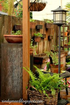 Fence planters...