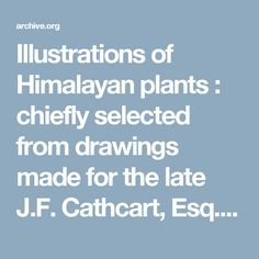 Illustrations of Himalayan plants : chiefly selected from drawings made for the late J.F. Cathcart, Esq.re of the Bengal Civil Service / the descriptions and analyses by J.D. Hooker ; the plates executed by W.H. Fitch. : Cathcart, John Fergusson, : Free Download & Streaming : Internet Archive