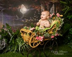 baby fairy in stroller photography session near Gig harbor  (1)