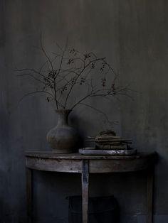 Natural Home with Hans Blomquist | Debi Treloar