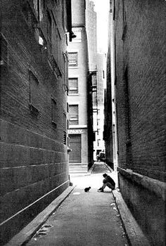 Henri Cartier-Bresson, Man in the street with his dog, New York