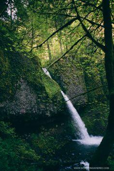 Kindred Living // Portland, OR by Kris LeBoeuf | SOMETHING KINDRED BLOG