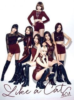 [K-POP] AOA will release their 2nd single in Japan.