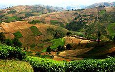 Burundi Countryside Photo by Jane Boles