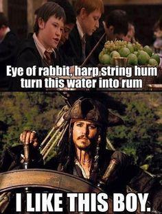 Pirates of the Caribbean and Harry Potter - hij zegt in de film ECHT (en geloof me, ik heb ze allemaal 4 keer gezien, letterlijk) eye of rabbit, harp string hum. Turn this water into rum.