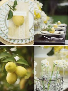 I adore the lace accents on the napkins.  Also love the lemons. A great idea.  Photo by Hoffmann Photographer.