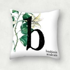 """b tipobotánica"" Cojín cuadrado #pattern #floral #botanical #interiordesign #interiordeco #deco #watercolour #art #flower #illustration #wallpaper #textil #ilustración #estampable #estampado #magdalenitadesign #green #tipografía #tipography #b #cushion #vainilla #vanilla #bauhiniaaculeata"