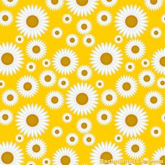 Seamless Daisy Pattern - Background Labs