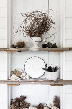 This shelf stying is perfect for rustic country style homes House Design, Cottage, Dream Decor, Home, Rustic Country, Holiday Cottage, House Styles, Country Style Homes, Vintage Chairs