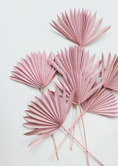 All Dried Flowers and Grasses at Afloral Paper Flowers Diy, Flower Crafts, Diy Paper, Paper Crafts, Paper Rosettes, Balloon Garland, Balloons, Flower Vases, Flower Arrangements